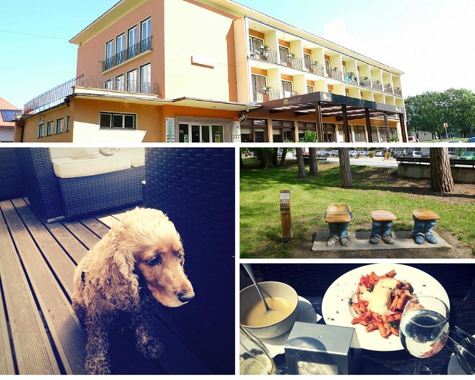 Hotel Rezident v Turčianskych Tepliciach