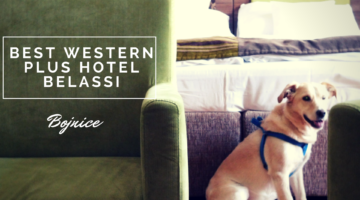 Ubytovanie so psíkom: Best Western Plus hotel Belassi