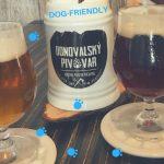 Prečo by si mal navštíviť dogfriendly Donovalský pivovar?