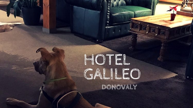 Frigova prvá recenzia: Hotel Galileo