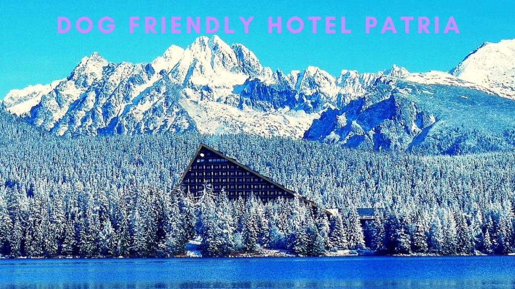 Ubytovanie pre páničkov a psikov: Hotel Patria
