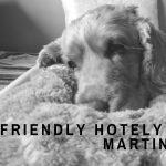 dog friendly hotel martin