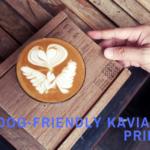 dog-friendly kaviarne prievidza