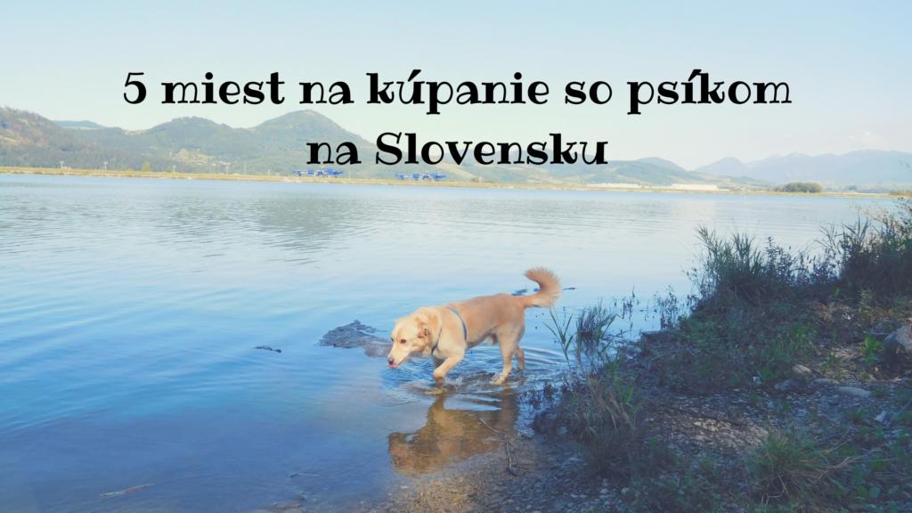 5+ miest na kúpanie so psíkom na Slovensku