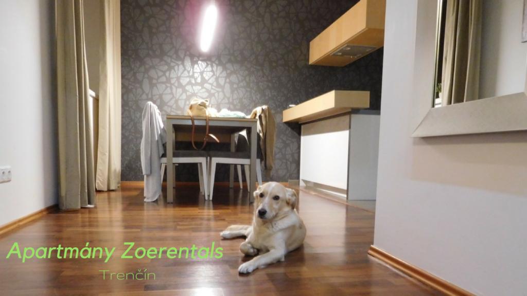 Ubytovanie so psom:apartmány Zoerentals Trenčín
