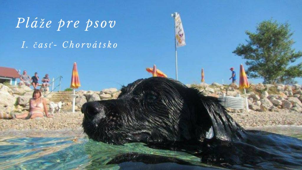 Kde v Európe nájdeš pláže pre psov? I.časť: Chorvátsko