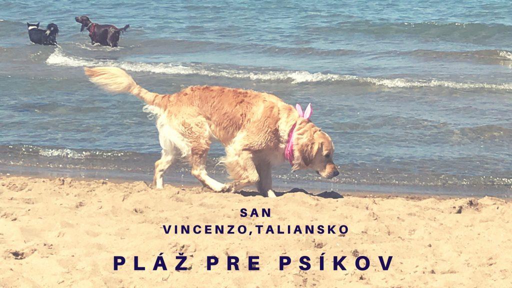 Pláž pre psíkov, do ktorej som sa zamilovala