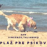 plaze pre psov taliansko