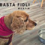Nová dog friendly kaviareň Basta Fidli ťa príjemne prekvapí