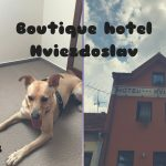 hotel hviezdoslav dogfriendly ubytovanie