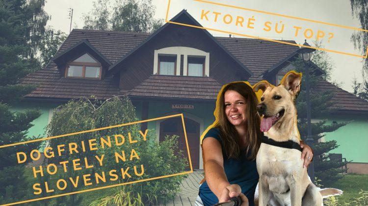 Dogfriendly hotely na Slovensku: tieto 3 sú top