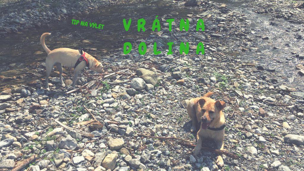 Výlet do Vrátnej doliny + tip na dogfriendly reštiku