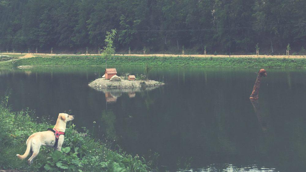 doliny na slovensku