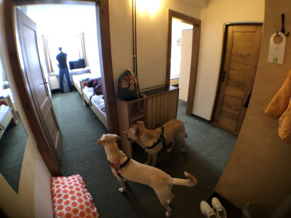 hotel diery recensita