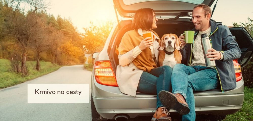 Aké krmivo zbaliť psíkom na cestu?